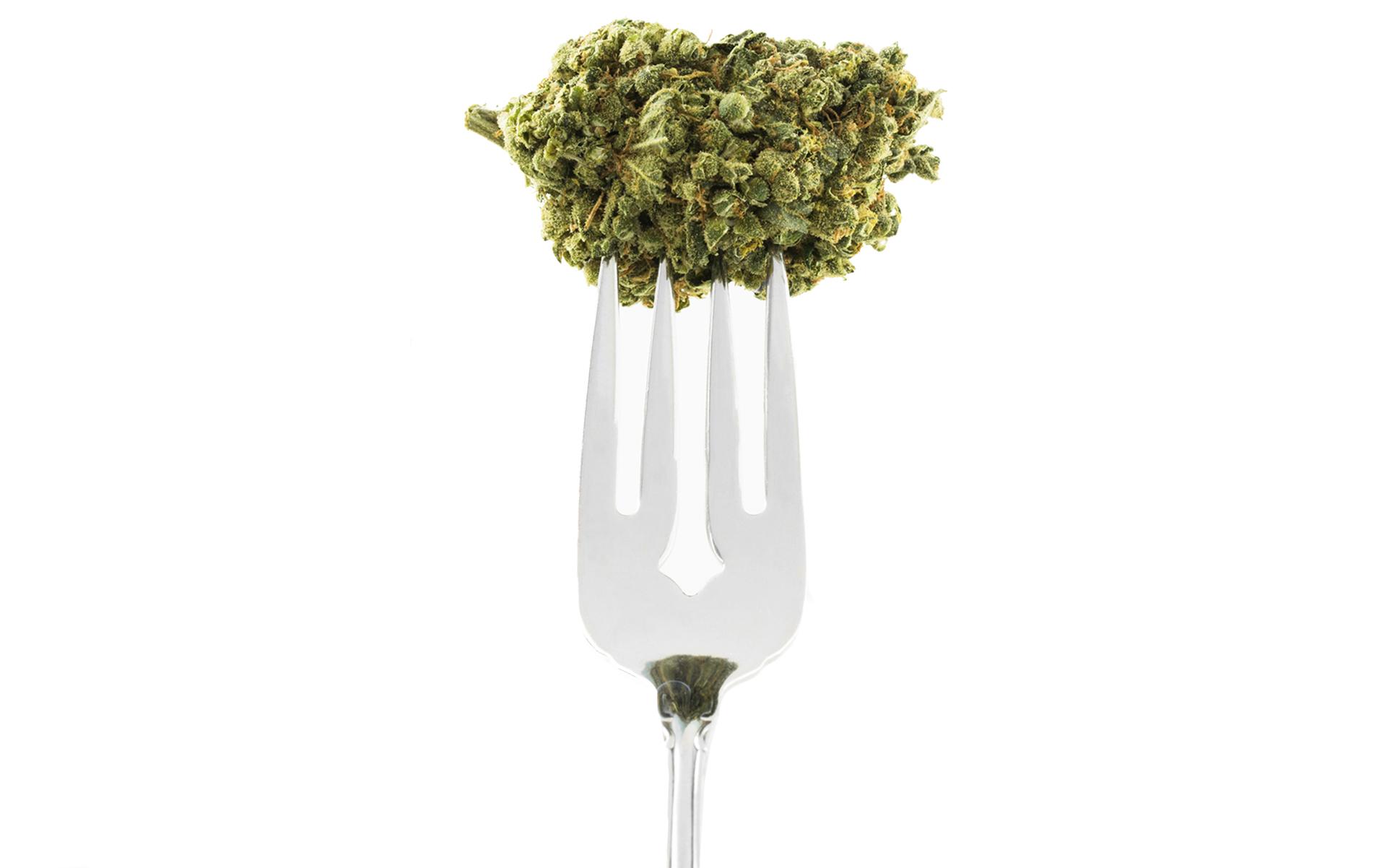 medical marijuana essays medical marijuana essay essay legalization of marijuana persuasive buscio mary argumentative essay on weed argumentative essay