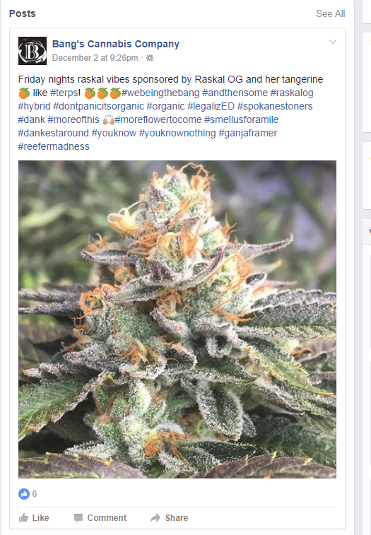 bangs-cannabis-facebook-post
