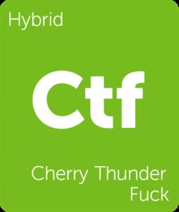 Leafly Cherry Thunder Fuck cannabis hybrid strain