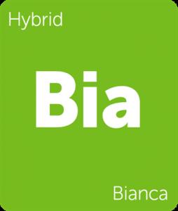 Leafly Bianca cannabis hybrid strain tile