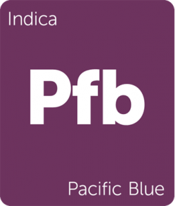 Leafly Pacific Blue cannabis indica strain tile