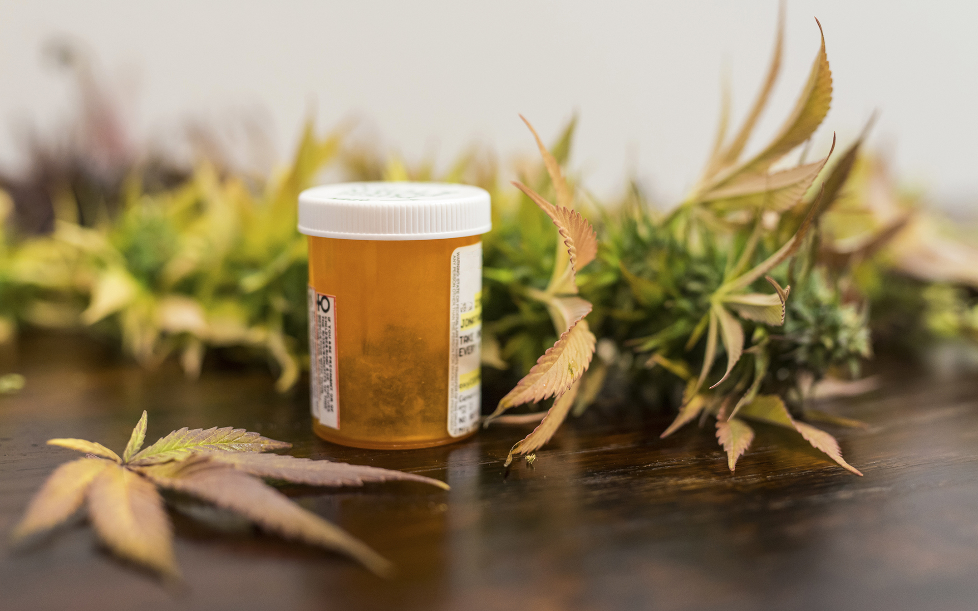 photo of COVID-19 and medical cannabis patients: What you need to know image