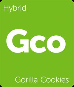 Leafly Gorilla Cookies hybrid cannabis strain