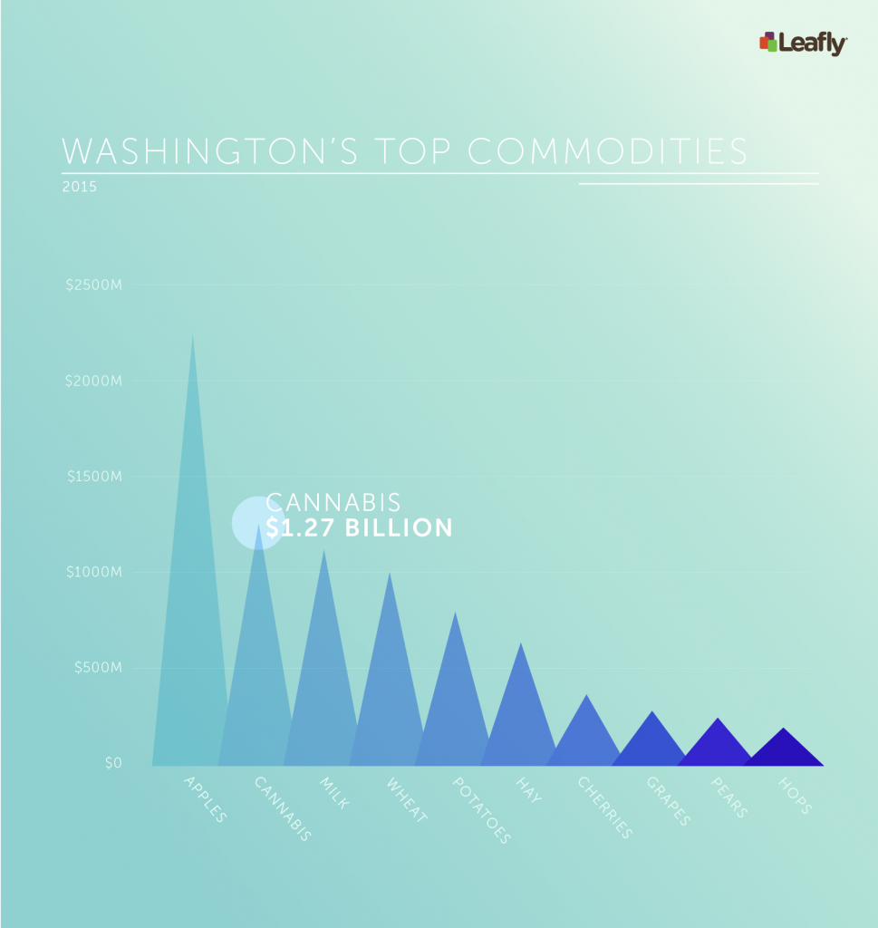 Cannabis is now Washington state's second most valuable crop.
