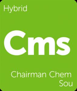 Leafly Chairman Chem Sou hybrid cannabis strain