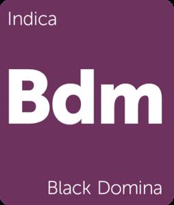 Leafly Black Domina indica cannabis strain