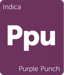 Leafly Purple Punch indica cannabis strain tile