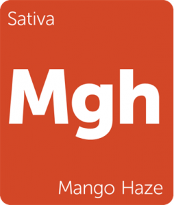 Leafly Mango Haze sativa cannabis strain
