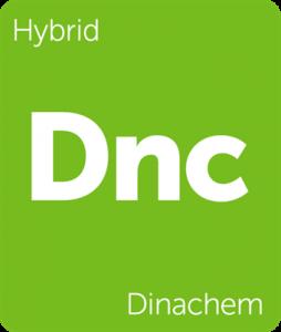 Leafly Dinachem hybrid cannabis strain tile