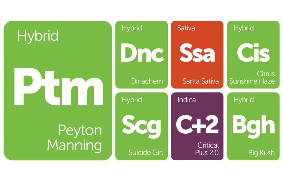 New Strains Alert: Suicide Girl, Citrus Sunshine Haze, Peyton Manning, and More