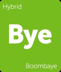 Leafly Boombaye hybrid cannabis strain