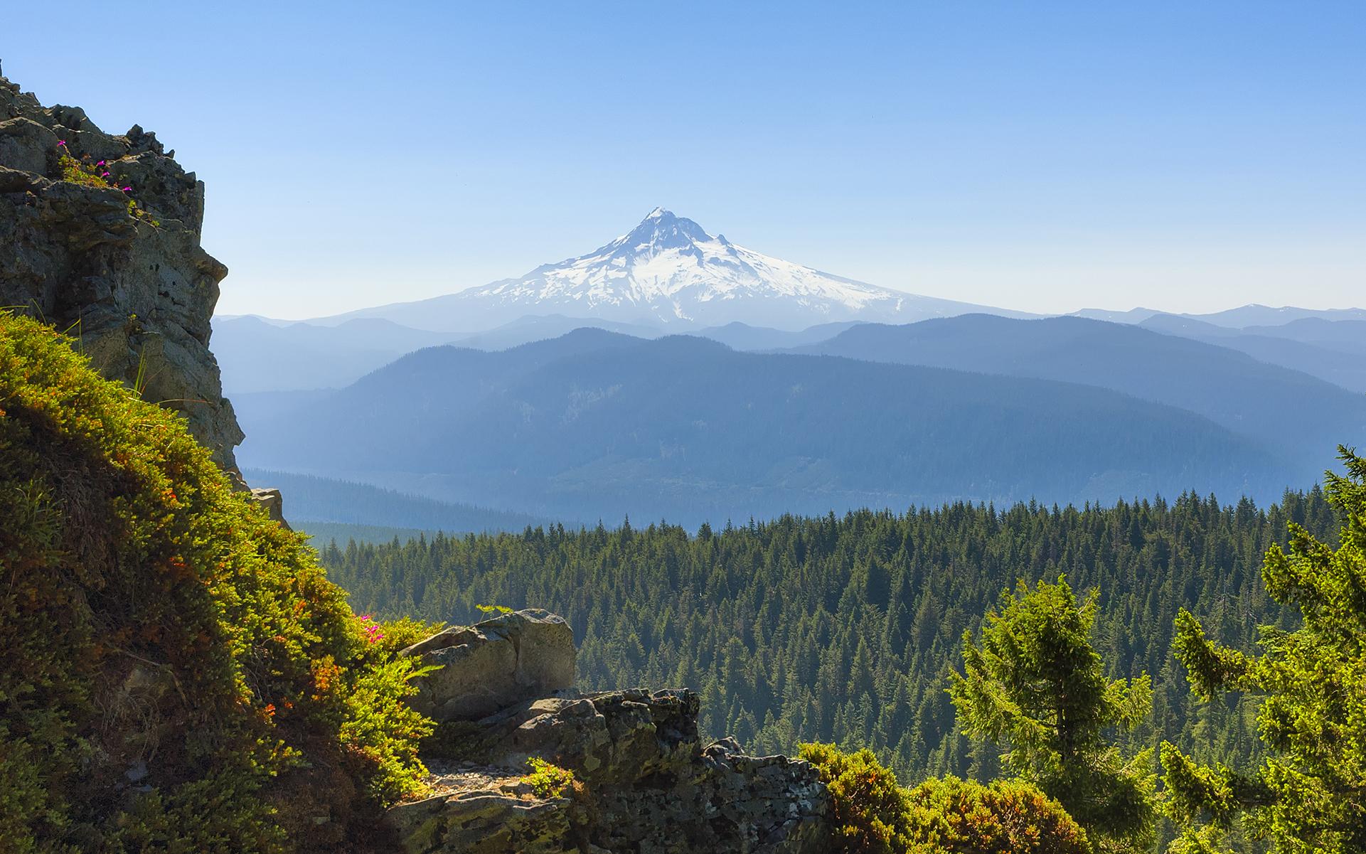 Oregon Dispensary Deals ontario