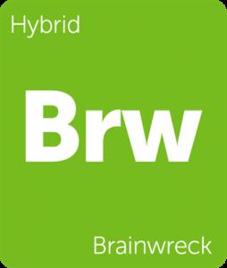 Brw Brainwreck