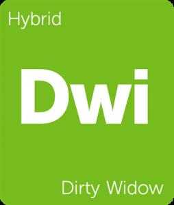 Dwi Dirty Widow