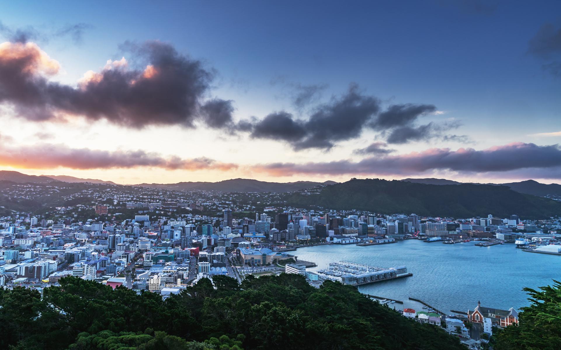 New Zealand Moving Forward, Slowly, on Medical Cannabis ...
