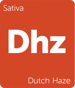 Leafly Dutch Haze cannabis strain tile