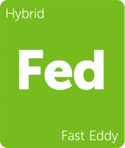 Fast Eddy Leafly cannabis strain tile