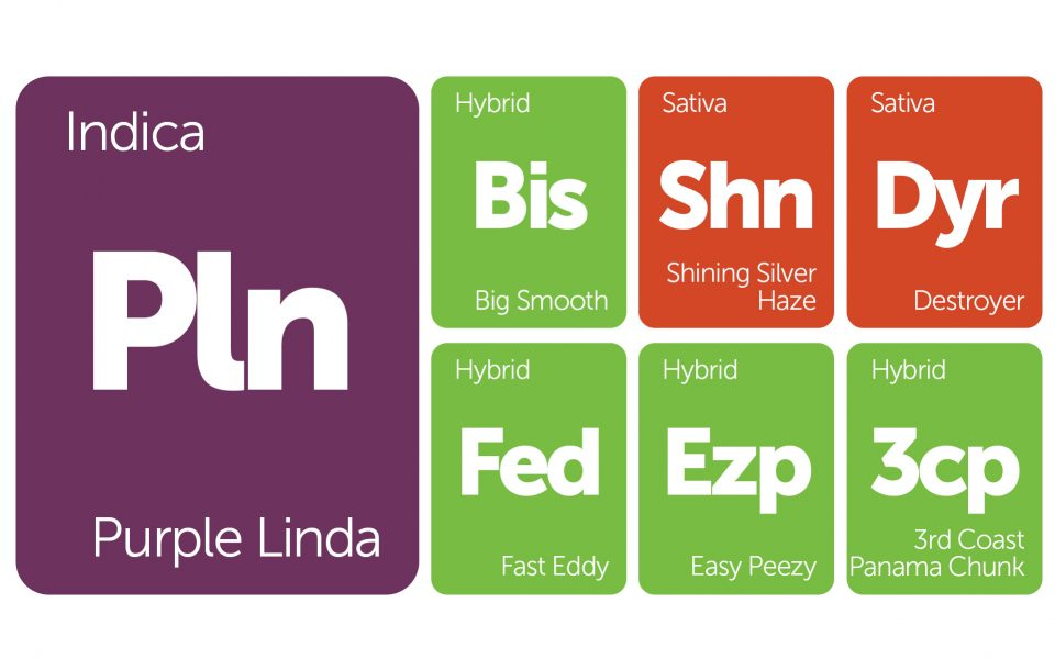 New Strains Alert: Big Smooth, 3rd Coast Panama Chunk, Destroyer, and More