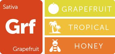 Leafly Grapefruit cannabis strain flavor profile