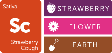 Leafly Strawberry Cough cannabis strain flavor profile