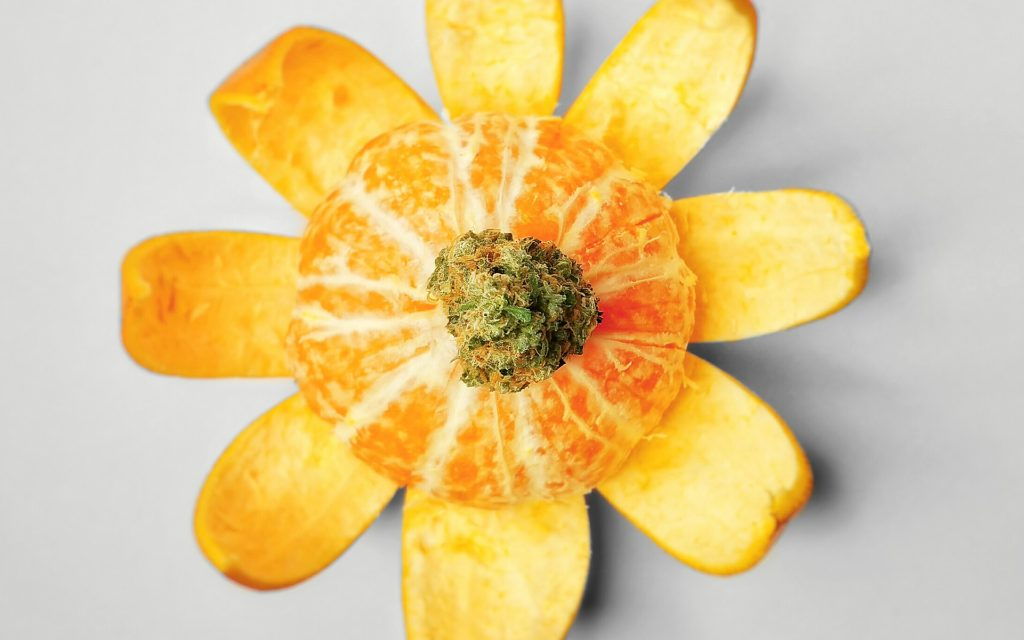 best tasting strains 2020 Leafly Staff Picks: The Best Tasting Cannabis Strains | Leafly