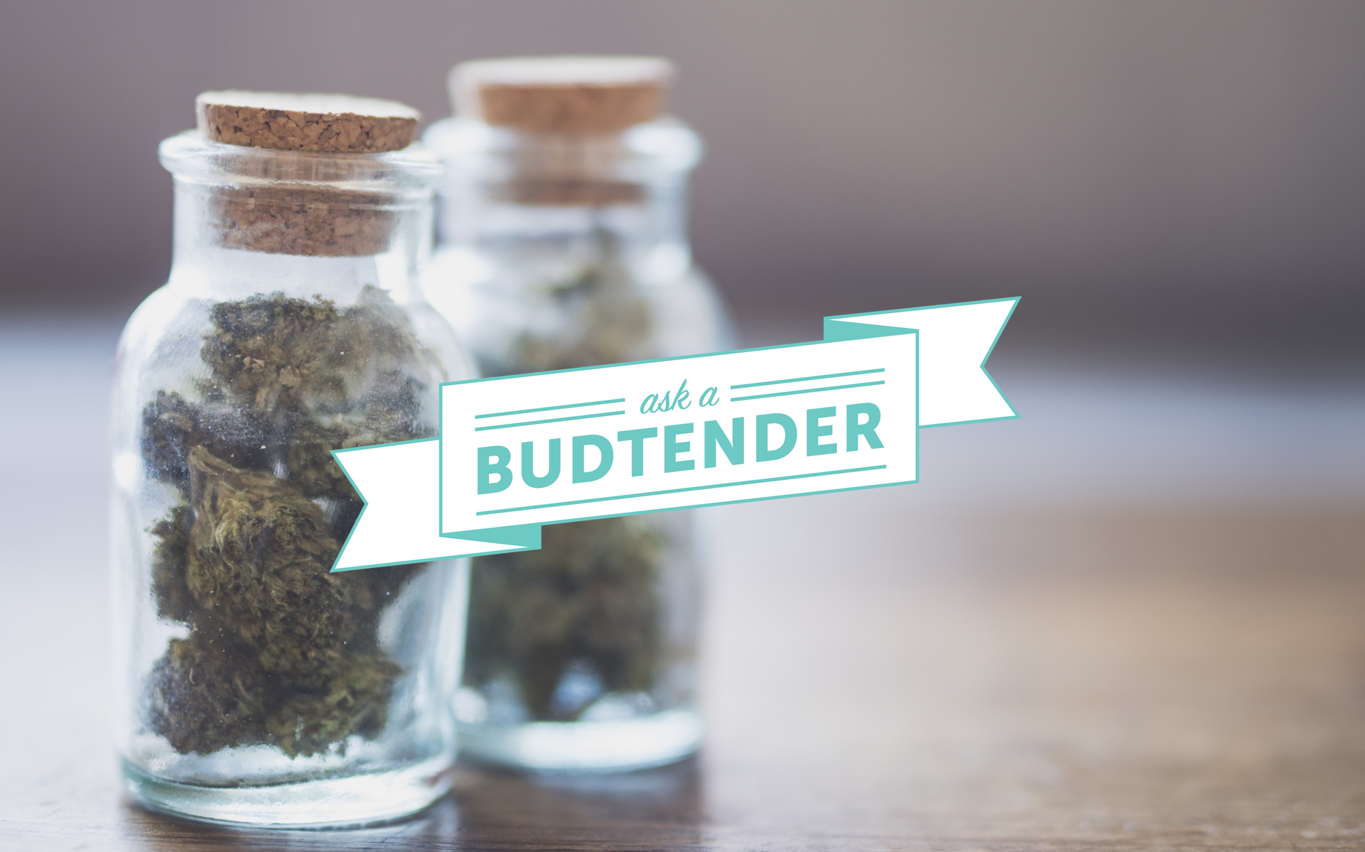 Meet Shanya Schonauer Californias First State Certified Budtender