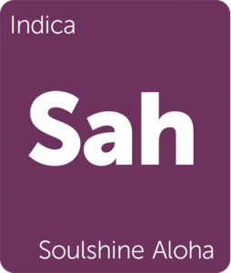 Sah Soulshine Aloha