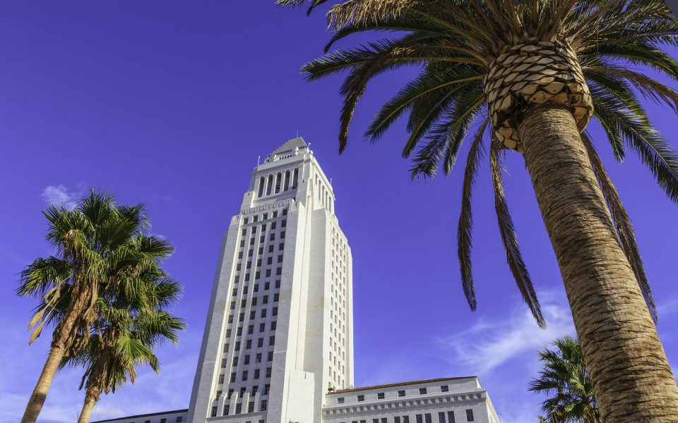 Delivery, Diversity Top Concerns at LA City Council Hearing