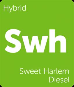 Leafly Sweet Harlem Diesel hybrid cannabis strain