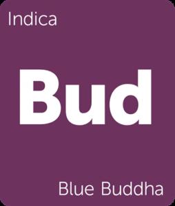 Blue Buddha Leafly cannabis strain tile
