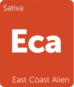 East Coast Alien Leafly cannabis strain tile