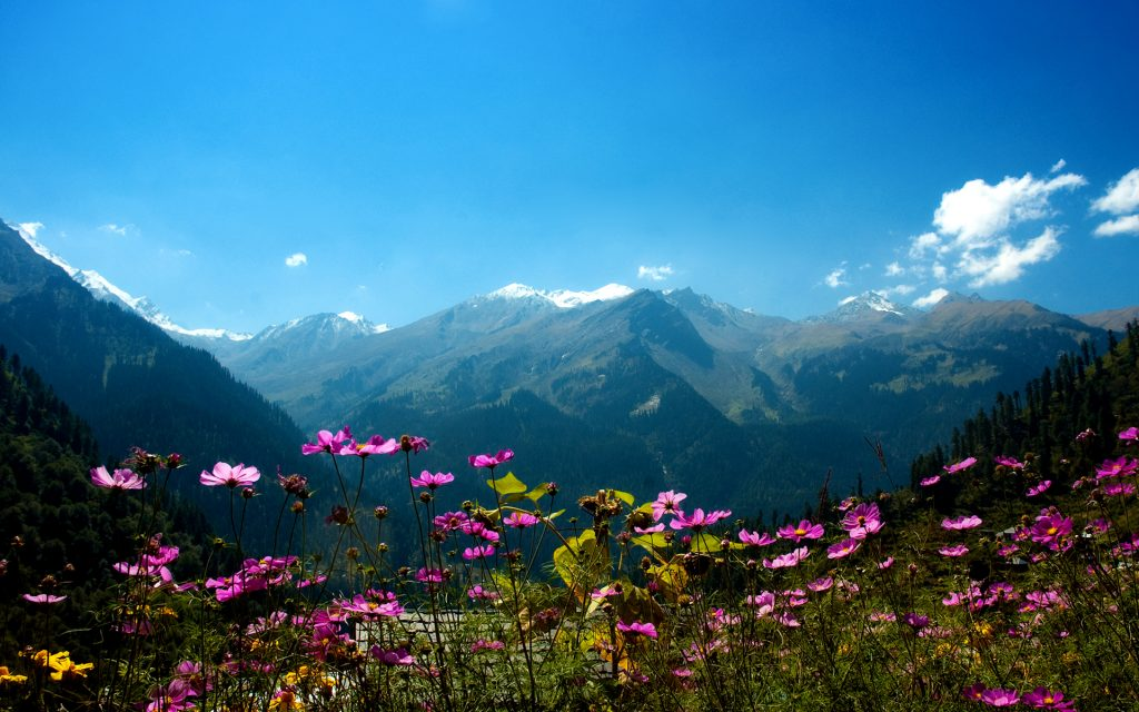 View of Parvati Valley