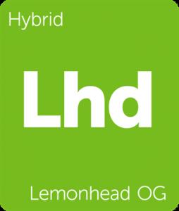 Lhd Lemonhead OG Leafly cannabis strain tile