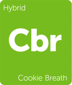 Leafly Cookie Breath hybrid cannabis strain