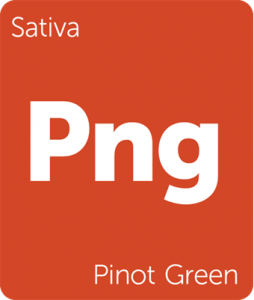 Png Pinot Green Leafly cannabis strain tile