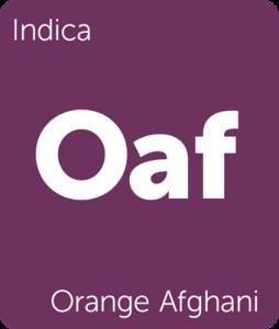 Leafly Orange Afghani indica cannabis strain