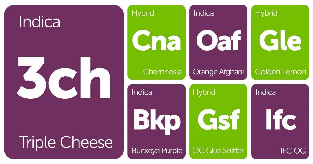 New Strains Alert: OG Glue Sniffer, Buckeye Purple, Golden Lemon, and More