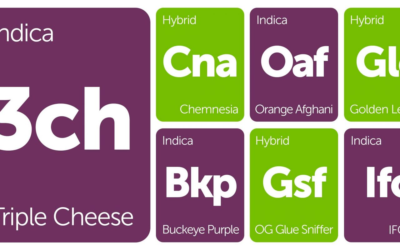 New Strains Alert: OG Glue Sniffer, Buckeye Purple, Golden Lemon, and More