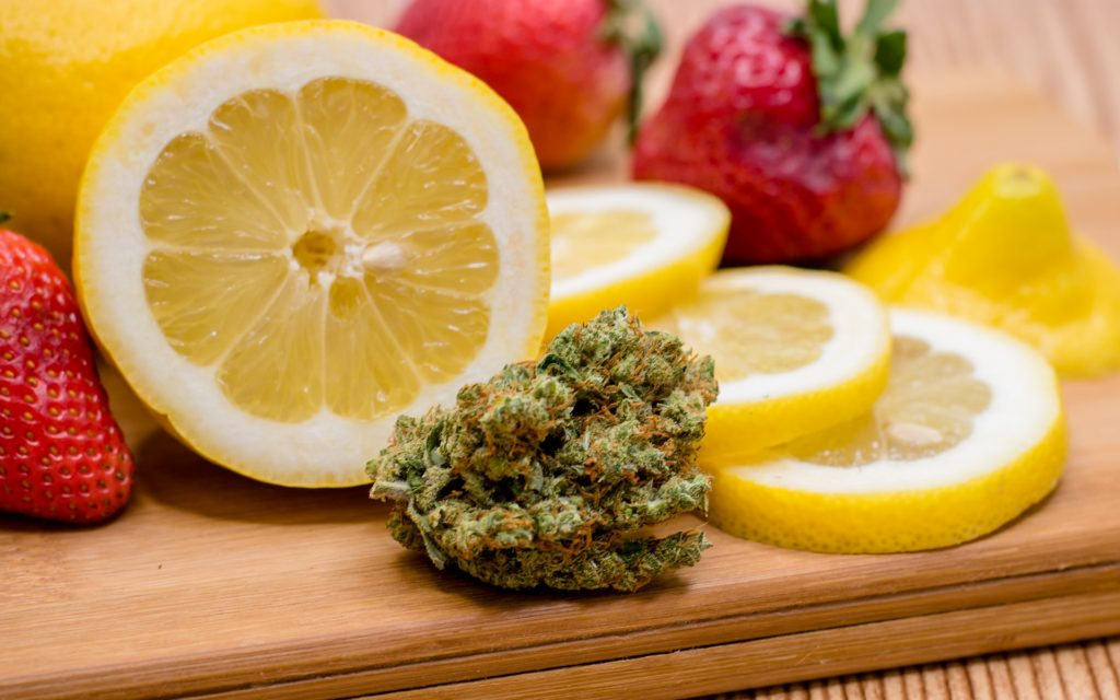 The Future of Cannabis May Lie in Terpene Isolation