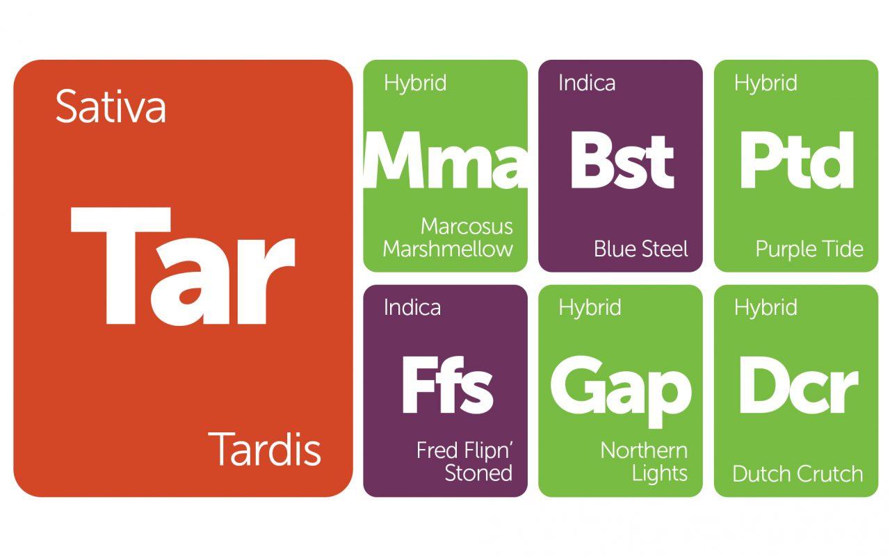 New Strains Alert: Tardis, Glass Apple, Dutch Crunch, and More