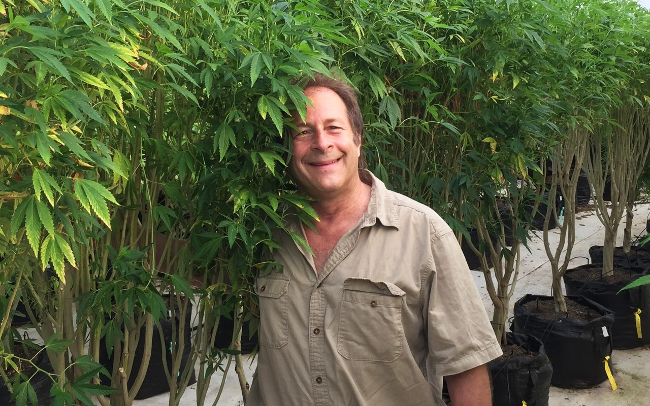 Rick Doblin of MAPS Talks Medical Cannabis Trials and a Possible Legalization Timeline