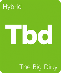 Tbd The Big Dirty Leafly cannabis strain tile