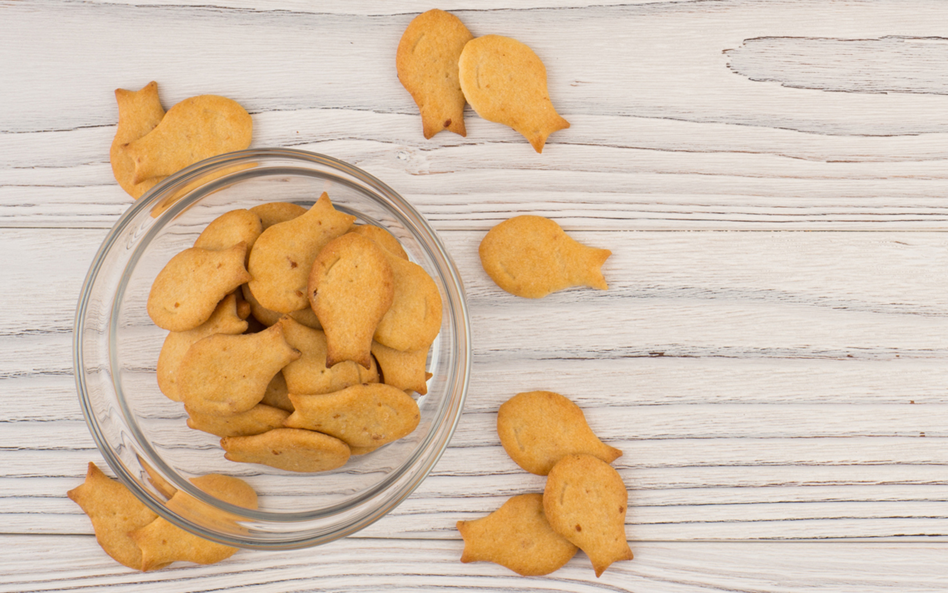 Respect the Goldfish Crackers: My Edibles Cautionary Tale