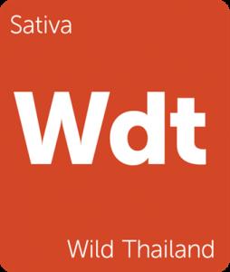 Wdt Wild Thailand Leafly cannabis strain tile