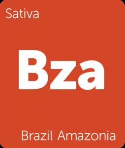 Bza Brazil Amazonia Leafly cannabis strain tile