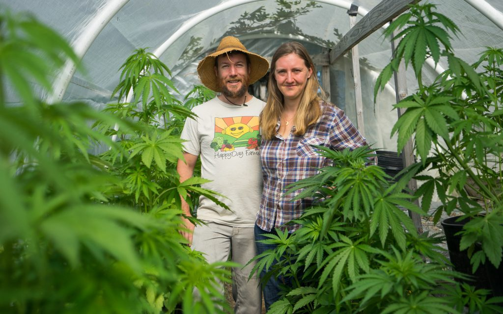 Amber and Casey O'Neil, California cannabis farmers, organized the Emerald Grown cannabis cooperative three years ago in Mendocino County.