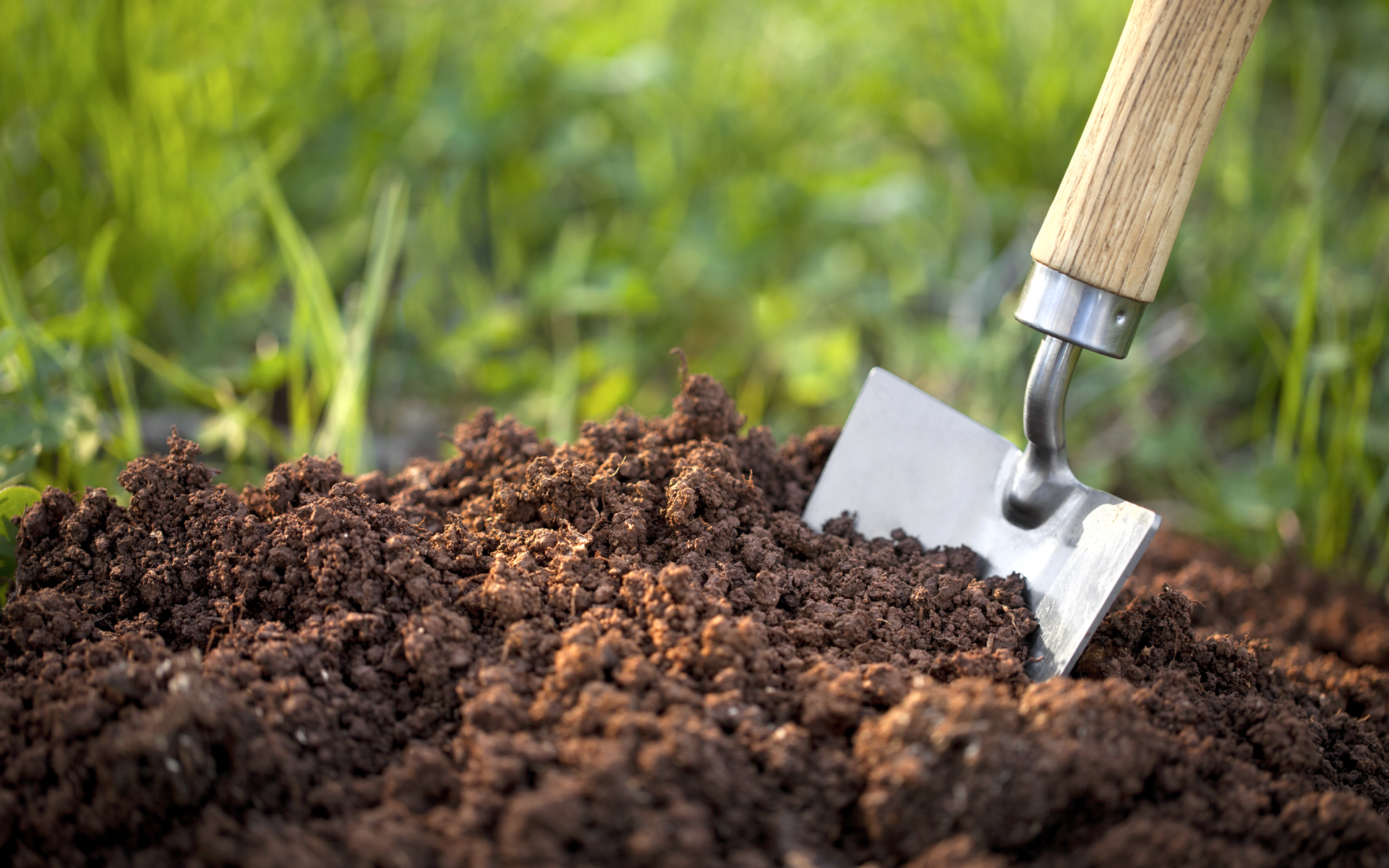 What is super soil and how do you make it leafly for Organic top soil