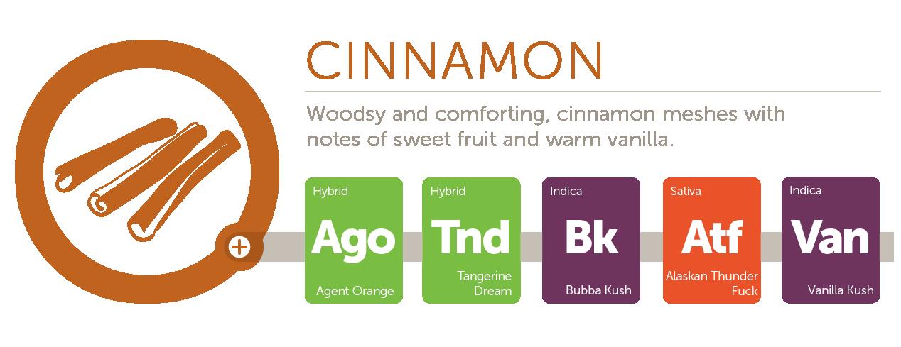 Cinnamon@2x