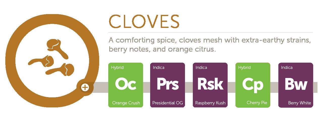 Cloves@2x
