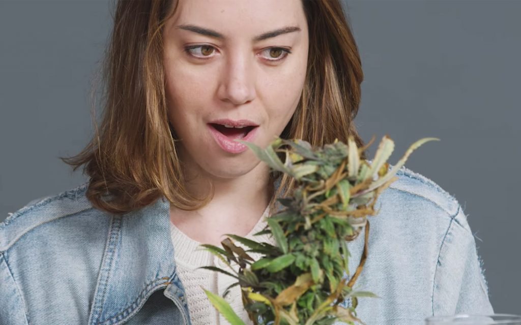 Watch This: Aubrey Plaza Smokes With the